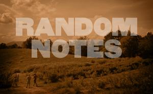 Random Notes - AUG