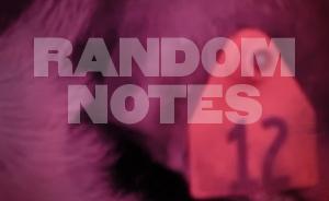 Random Notes - JUL