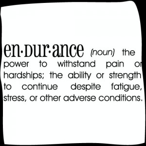 endurance-dictionary-definition-sticker_3_large_Fotor
